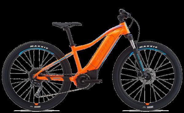 """E-Bike 26"""" rental"""